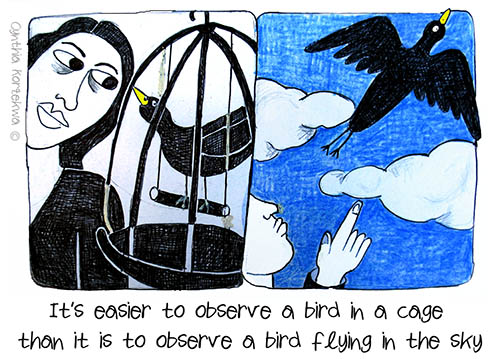 Bird in a Cage, Bird in the Sky