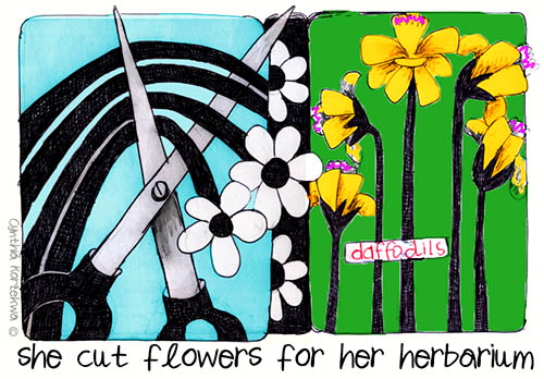 she cut flowers for her herbarium