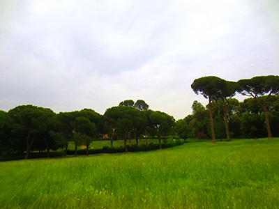 Villa Ada Pines